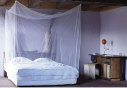 Market Finds Mosquito Net