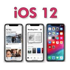 iOS 12 Fixes