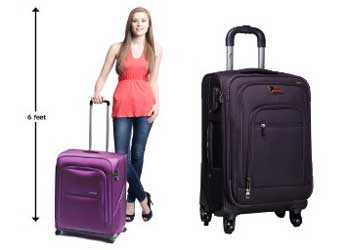 Samsonite and F Gear Luggage Suitcases
