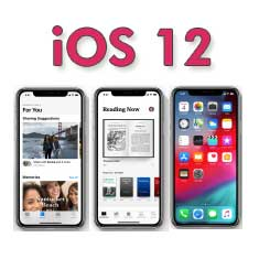 iOS 12 Fixes